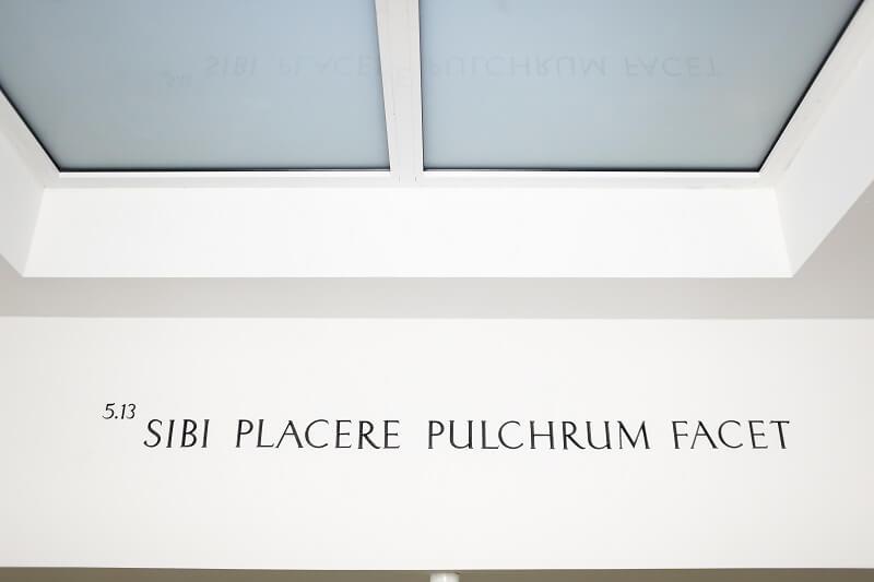 Das gemeinsame Logo von Beethoven 5.13 Klinik und Pantheon Aesthetic Center